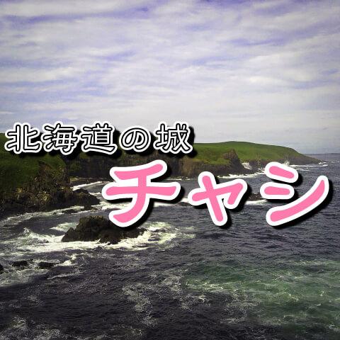 チャシ・北海道の城