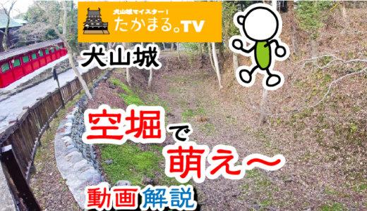 犬山城の空堀を逆から見てみたら、高低差がよくわかって萌え~という動画をアップしたよ。