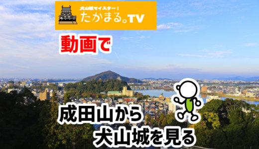 成田山から犬山城を見る!っていう動画をアップしたよ!