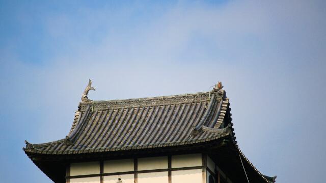 2017年(平成29年)7月13日。犬山城天守の鯱が破損した様子。