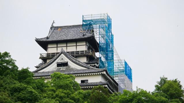 2017年(平成29年)8月3日。犬山城天守のしゃちほこ修理のための足場が北面を覆う。