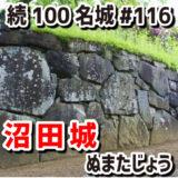 沼田城(ぬまたじょう)#116『北条・上杉・武田が争奪戦を繰り返した城』