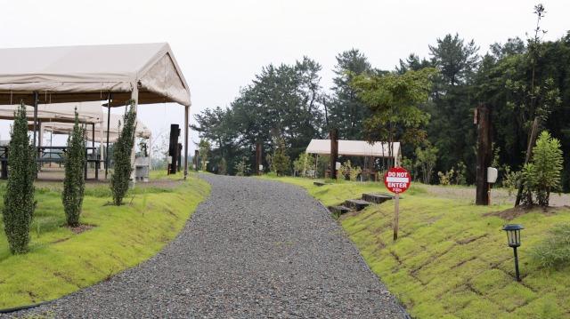 伊木山フォレスト内の道