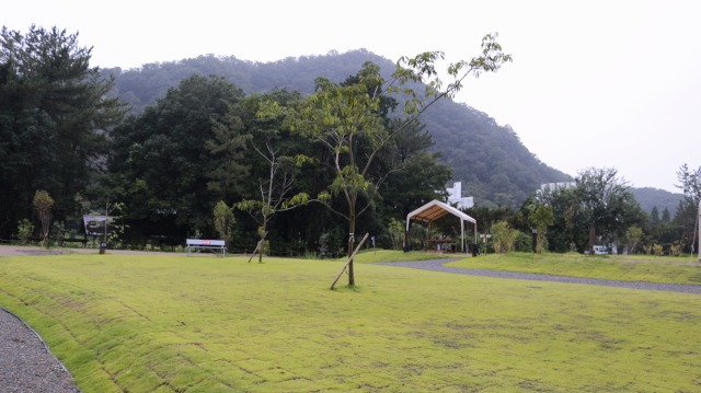 伊木山フォレストにある芝生エリア