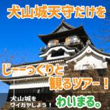 『犬山城天守だけをじーーっくりと観るツアー!』わいまる。を開催します。