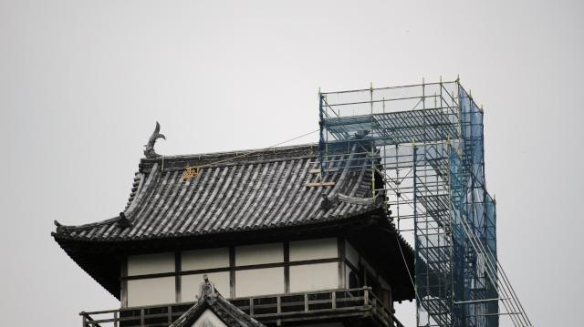 しゃちほこの修復のため、犬山城天守に足場が組まれた