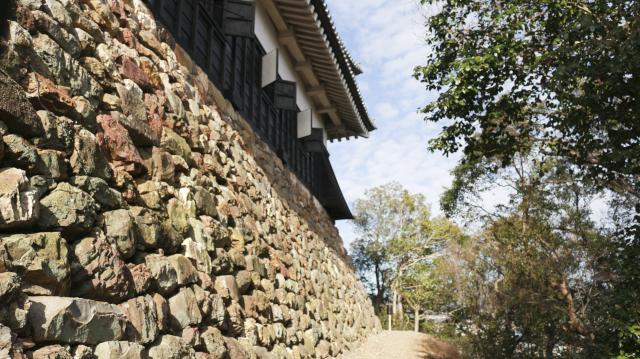 犬山城の天守台石垣・東側